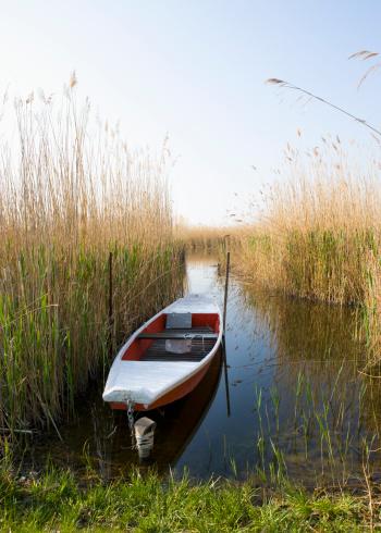 Austria「Austria, Burgenland, Moerbisch, View of empty fishing boat at Lake Neusiedl」:スマホ壁紙(11)