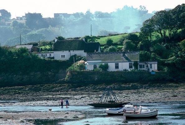 Grass Family「Gillan Harbour, Helford River Estuary, Cornwall」:写真・画像(11)[壁紙.com]