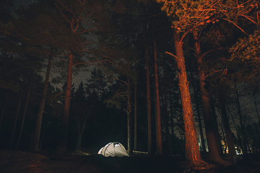 Night「Sweden, Sodermanland, tent in forest under starry sky at night」:スマホ壁紙(5)
