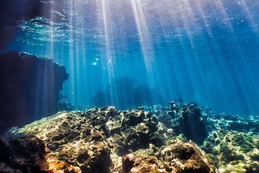 Sea「Underwater seascape, Ko Haa Island 3, Andaman Sea, Krabi, Thailand」:スマホ壁紙(18)