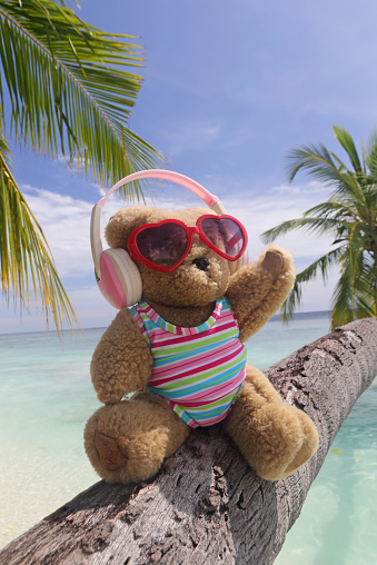 Stuffed Animals「Bear sitting on a palm tree listening to music」:スマホ壁紙(7)
