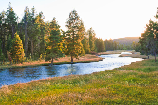 Montana - Western USA「Nez Perce Creek in Yellowstone National Park at sunset」:スマホ壁紙(18)