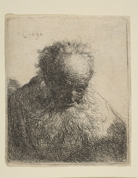 Beard「Bust Of An Old Man With A Flowing Beard: The Head Bowed Forward: Left Shoulder Unshaded」:写真・画像(16)[壁紙.com]