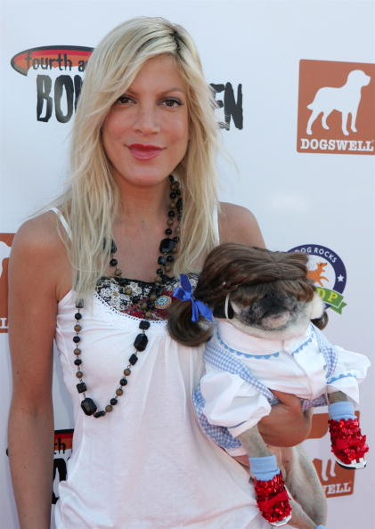 Awe「4th Annual Much Love Animal Rescue Bow Wow Ween - Arrivals」:写真・画像(14)[壁紙.com]