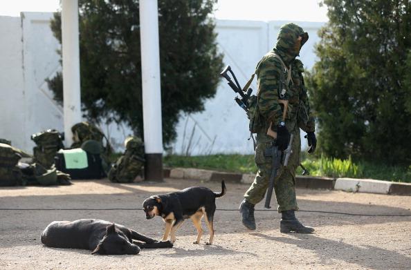 Surrendering「Ukraine Crisis Continues As The Crimea Prepares To Vote In The Referendum」:写真・画像(16)[壁紙.com]