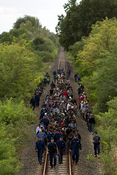Protection「Migrants Continue To Arrive In Hungary」:写真・画像(5)[壁紙.com]