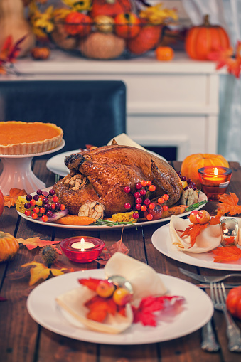 Maple Leaf「Roasted Thanksgiving Turkey with Side Dishes」:スマホ壁紙(14)