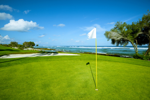 Green - Golf Course「Beach Golf Course On Island」:スマホ壁紙(8)