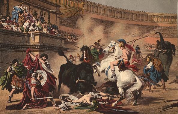 動物「Roman Bullfight」:写真・画像(15)[壁紙.com]