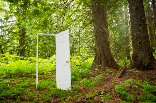 Freedom「Door in the Forest」:スマホ壁紙(13)