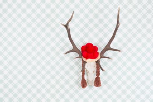 ガラス「Germany, Freiburg, Deer antler with black forest hat hanging on wall, close up」:スマホ壁紙(14)