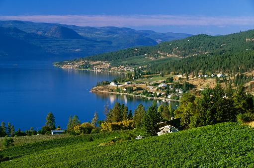 Organic Farm「Winery rural scenic lake landscape」:スマホ壁紙(13)