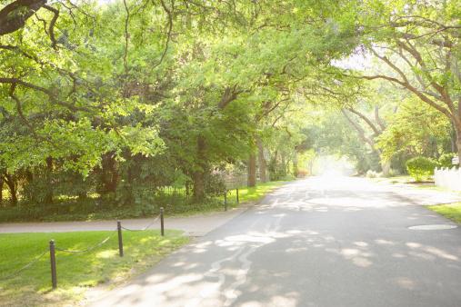 Urban Road「Residential neighborhood」:スマホ壁紙(13)