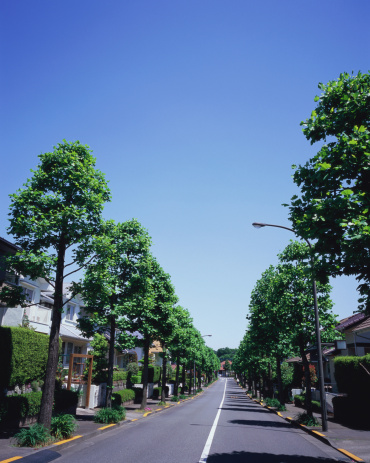 昼間「Residential district in Japan」:スマホ壁紙(10)