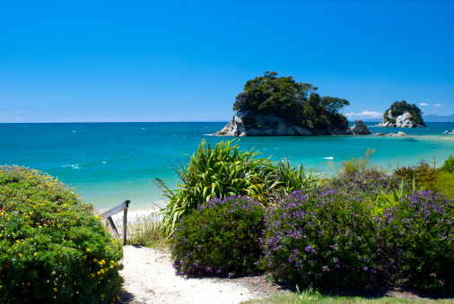New Zealand Culture「Little Kaiteriteri Beach Access, Tasman Region, New Zealand」:スマホ壁紙(5)