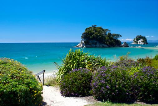 Kiwi「Little Kaiteriteri Beach Access, Tasman Region, New Zealand」:スマホ壁紙(13)