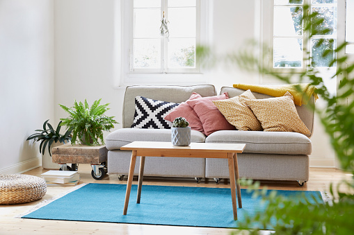 Houseplant「Bright modern living room in an old country house」:スマホ壁紙(0)