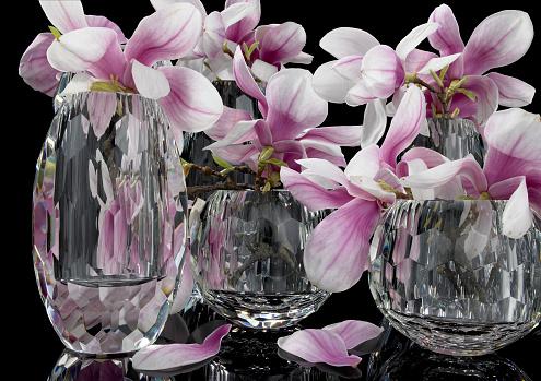 薄ピンク「Magnolia in Glasvase」:スマホ壁紙(9)