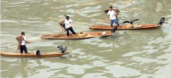 Dumpling「China Celebrates The Dragon Boat Festival」:写真・画像(3)[壁紙.com]