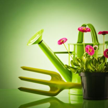 Planting「Planting arrangment」:スマホ壁紙(15)