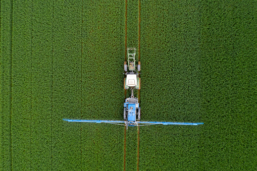 Insecticide「Tractor spraying wheat field, aerial view」:スマホ壁紙(3)