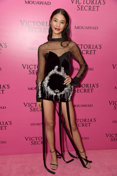 2017 Victoria's Secret Fashion Show In Shanghai - After Party:ニュース(壁紙.com)