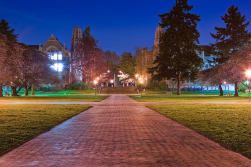 Footpath「University of Washington Quad at Night」:スマホ壁紙(12)