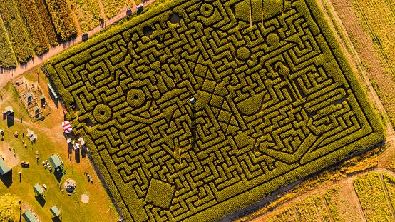 Pennsylvania「The huge Halloween's Corn Maze in Pennsylvania, Poconos Region」:スマホ壁紙(16)