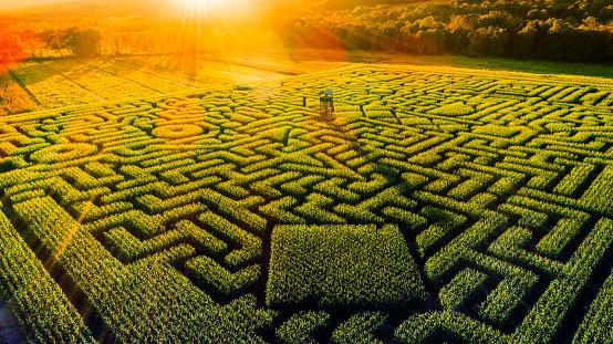 Pennsylvania「The huge Halloween's Corn Maze in Pennsylvania, Poconos Region」:スマホ壁紙(13)