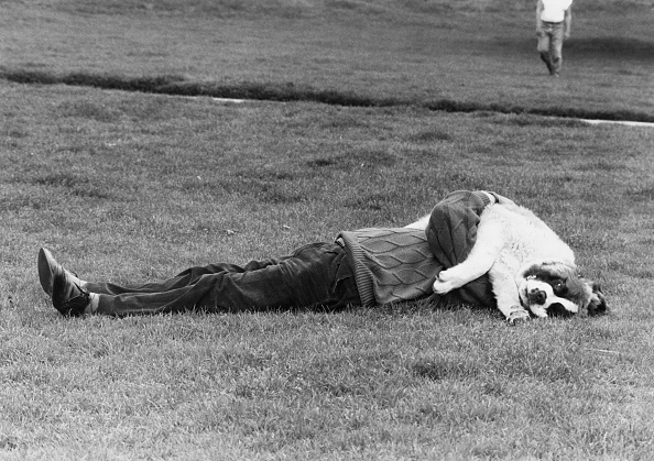 Larry Ellis Collection「Canine Sunscreen」:写真・画像(12)[壁紙.com]