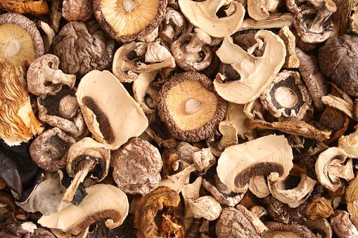 Portobello Mushroom「Mixed dried mushrooms」:スマホ壁紙(9)