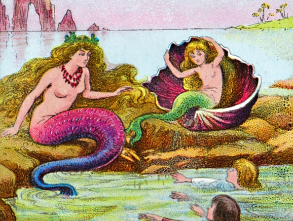 殻「The Mermaids」:写真・画像(14)[壁紙.com]
