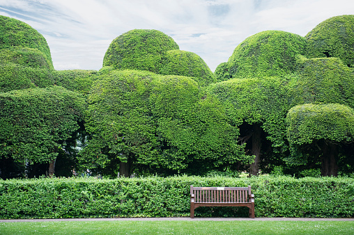 Bench「Park Bench」:スマホ壁紙(4)