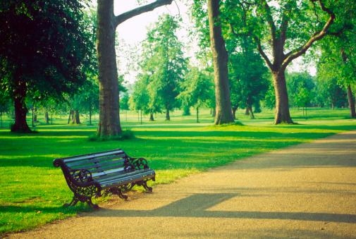 公園「公園のベンチ」:スマホ壁紙(14)