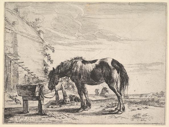 Trough「Horse Bound To A Feeding Trough Creator: Dirck Stoop」:写真・画像(15)[壁紙.com]