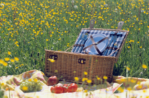 Picnic Basket「Picnic basket and fruit in meadow」:スマホ壁紙(7)