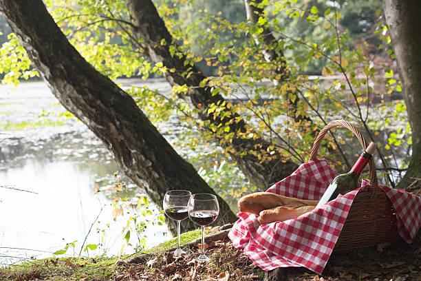 ピクニックバスケットとバゲットと wineglasses の木々の下での湖:スマホ壁紙(壁紙.com)