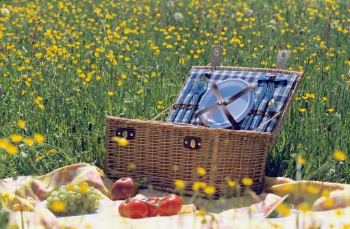 ギフトバスケット「Picnic basket in meadow」:スマホ壁紙(8)