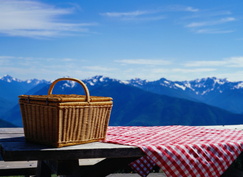 Picnic「Picnic Basket on a Picnic Table on Hurricane Ridge」:スマホ壁紙(6)