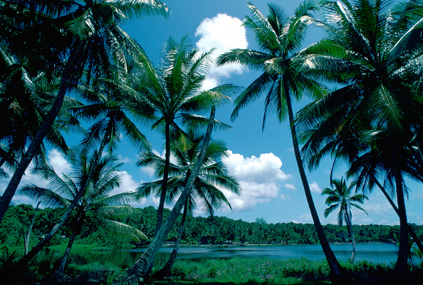 風景(季節別)「Nauru Lagoon, South Pacific」:写真・画像(11)[壁紙.com]