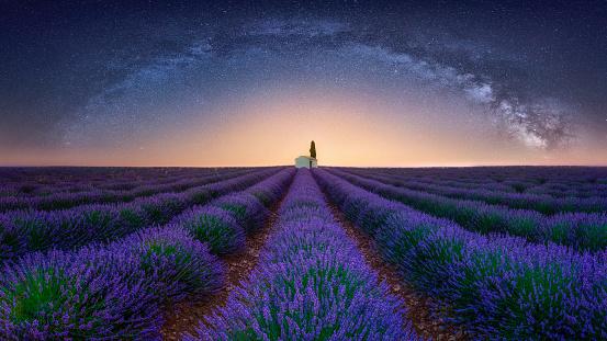 Milky Way「France, Alpes-de-Haute-Provence, Valensole, lavender field under milky way」:スマホ壁紙(14)