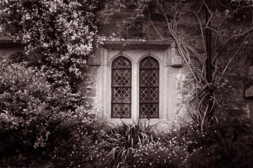 Abbey - Monastery「Window」:スマホ壁紙(11)