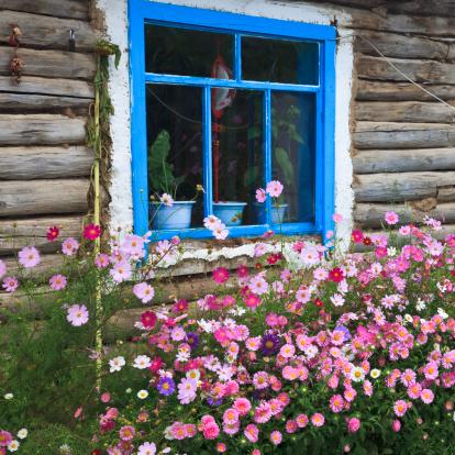 Ornamental Garden「window」:スマホ壁紙(19)