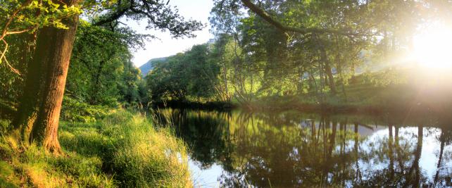 アーン川「Sunlit river bank」:スマホ壁紙(5)