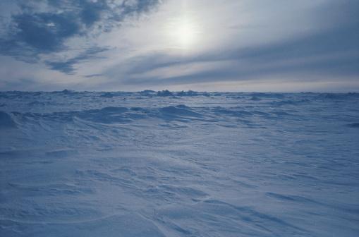 北極「Frozen Tundra」:スマホ壁紙(19)
