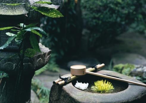 Kyoto City「Washbowl」:スマホ壁紙(17)