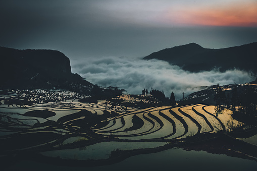 Indigenous Culture「china yuan yang padi Rice Terraces early in the morning with reflection of sunlight from the water and cloud」:スマホ壁紙(5)