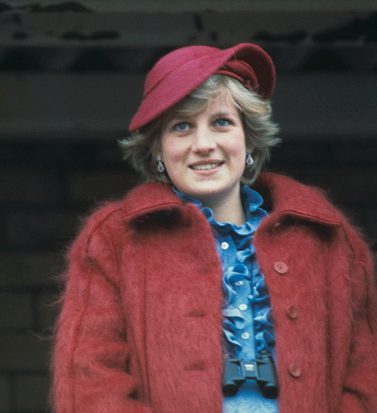 Princess「Diana At Aintree」:写真・画像(3)[壁紙.com]