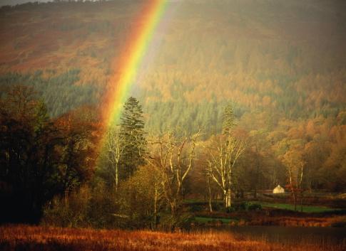 スコットランド文化「Scotland, Strathclyde, Loch Lomond, rainbow's end in autumnal forest」:スマホ壁紙(1)