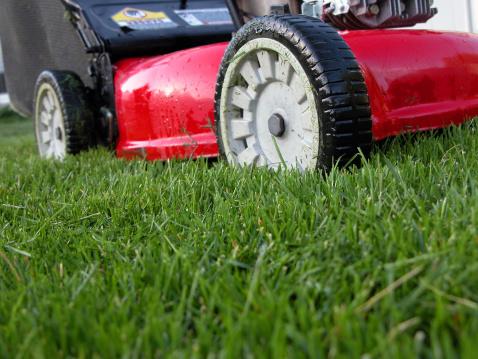 Lawn Mower「Lawn Machine on Green Grass」:スマホ壁紙(15)